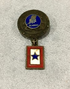 Seabee Blue Star Mother Pin