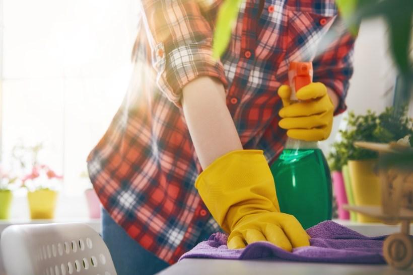 housecleaner.jpg
