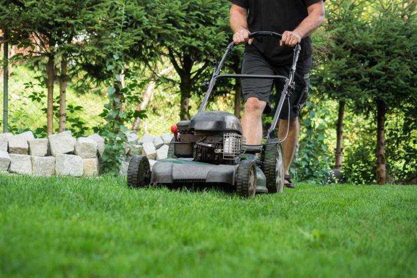 yard work.jpg