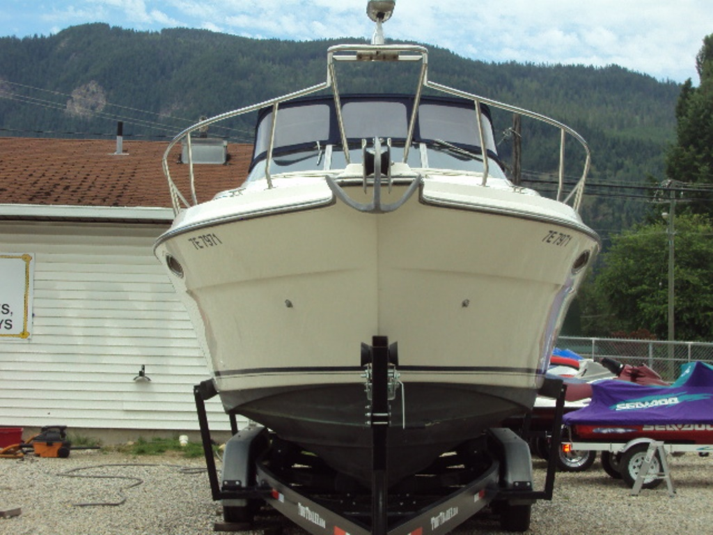 Seadog Boat Sales Boat Rentals Fishing Charter Water