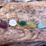 five pieces of different coloured seaglass on top a piece of driftwood.