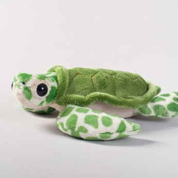 Oceana green turtle plush toy.