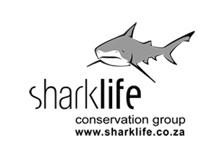 Sharklife logo