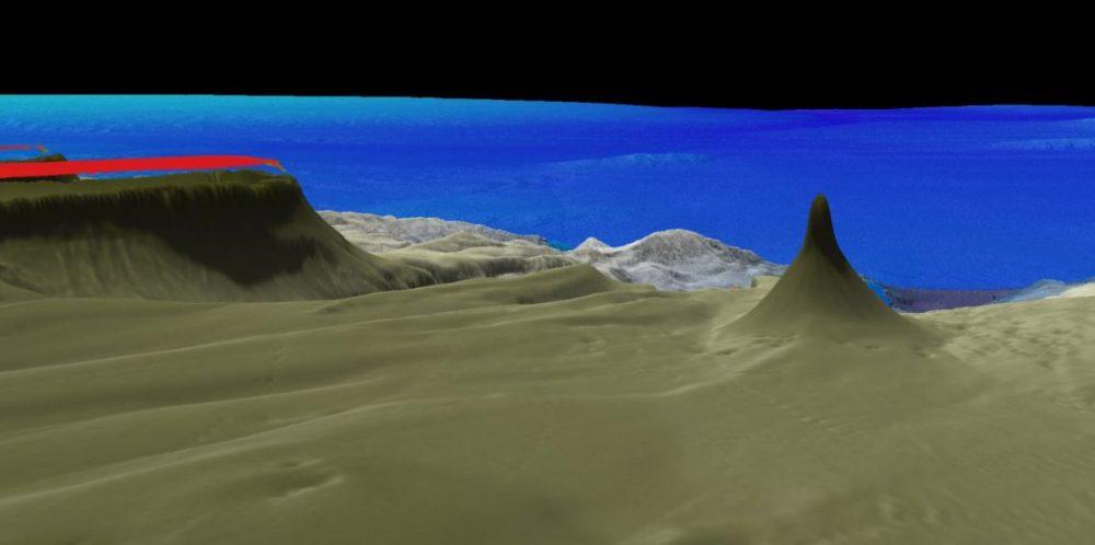 coral skyscaper - schmitt institute