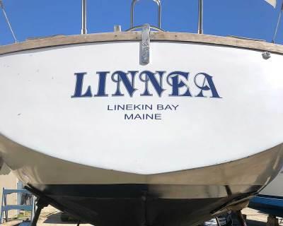 boat-lettering-linea