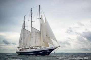 Eendracht,Belfast tall ships race 2015,photos of tall ships