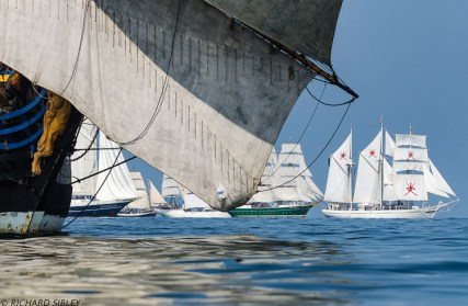 Eendracht, Pelican, Christian Radich, Alex II and Shabab Oman under the jib boom of the Swedish Ship Gotheborg