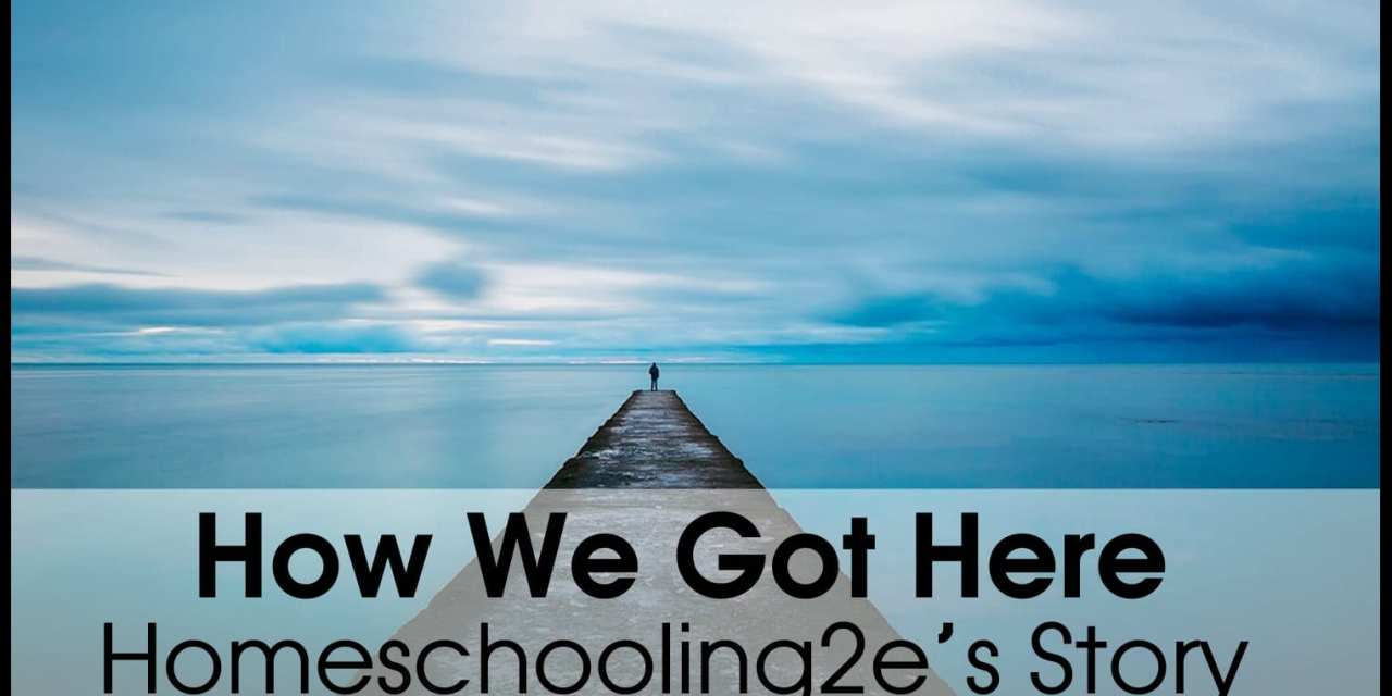 Our Journey : Unexpectedly Homeschooling a Twice Exceptional Child