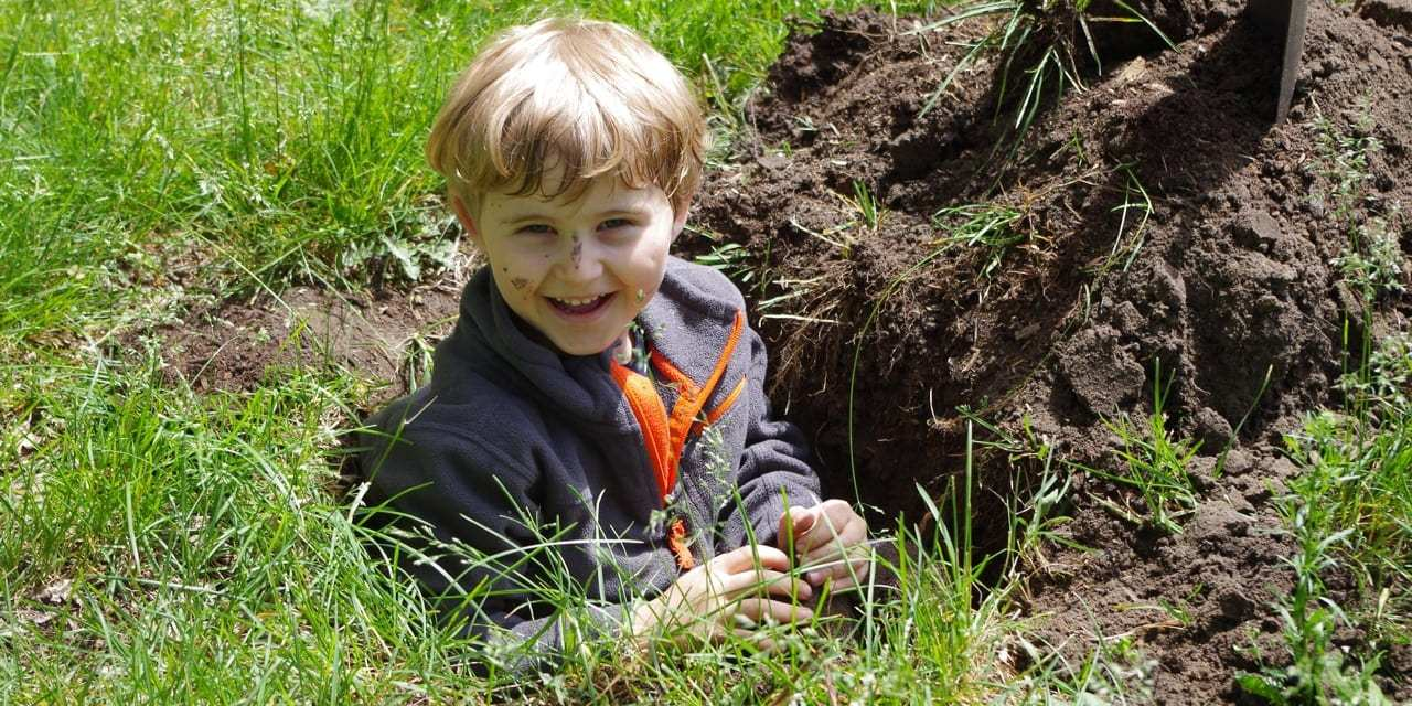 Plant a Native Garden with Your Kids