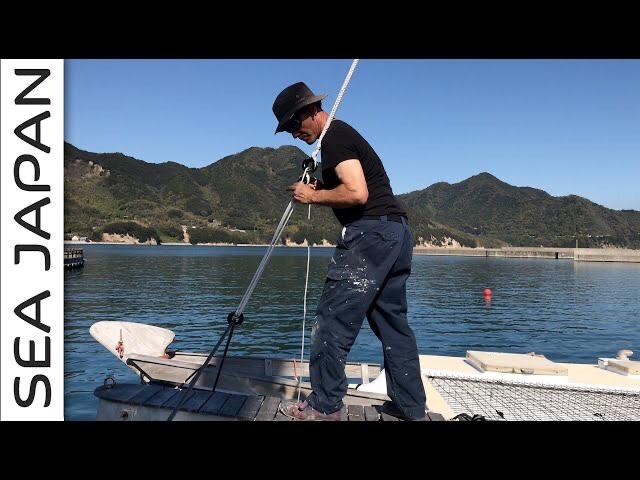 Wharram catamaran new dyneema rigging
