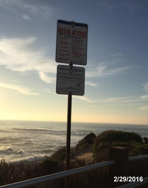 SC_Adopt_a_Beach_2016