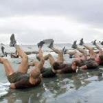 The Best Navy SEAL Workouts