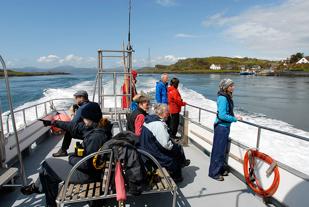Sealife Adventures people on Porpoise 2