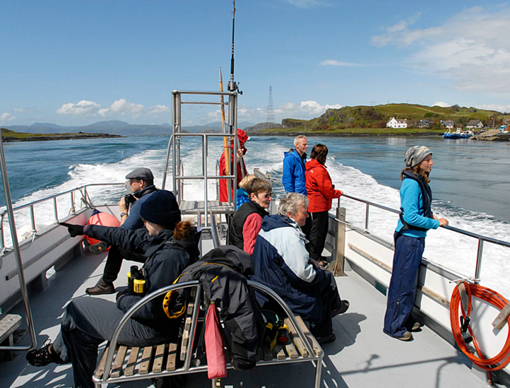 People out on our boat on a whale spotting trip near Oban