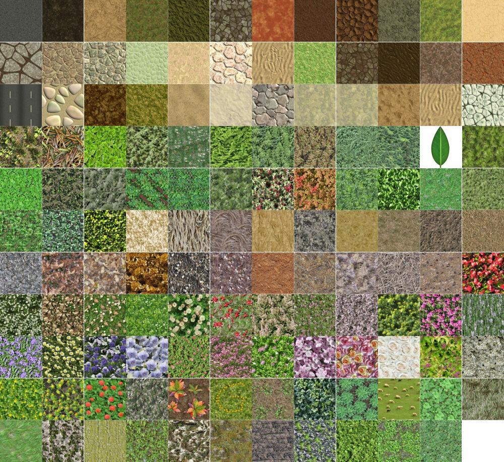 Volume 6: Ground and Plants