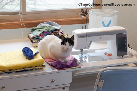 Spring Cleaning Tips: How to Declutter Your Sewing Studio