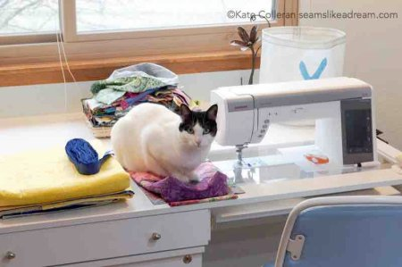 Spring Cleaning Tips: How to Declutter Your Sewing Studio featured by top US quilting blog and shop, Seams Like a Dream Quilt Designs