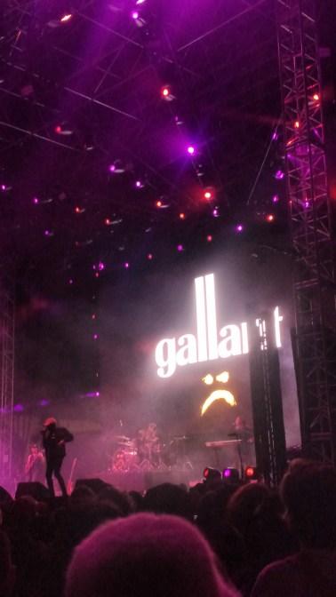 Gallant 1