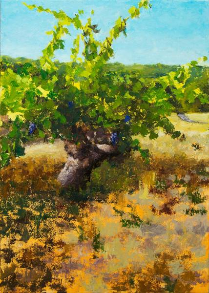 Sonoma-Vineyard-Work-in-Progress-Painting-Seamus-Berkeley