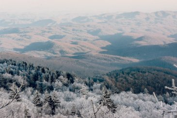 Grandfather Mountain North Carolina-7