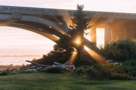 Harris Beach State Park Oregon