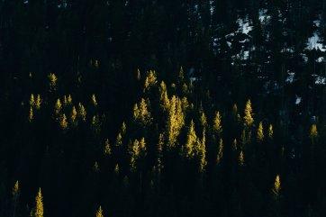 Winter Park Colorado Mountains-21