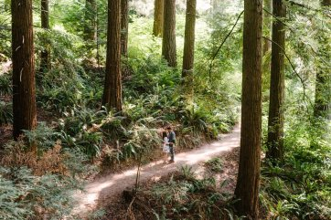 Hoyt Arboretum Portland Elopement