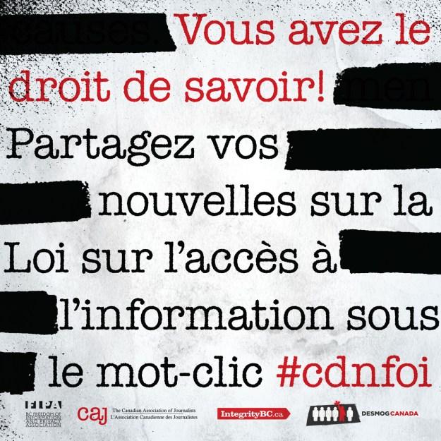 #CDNFOI FRENCH2