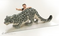 Snow leopard  Sean Kenney