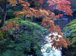 The gardens in Nikko