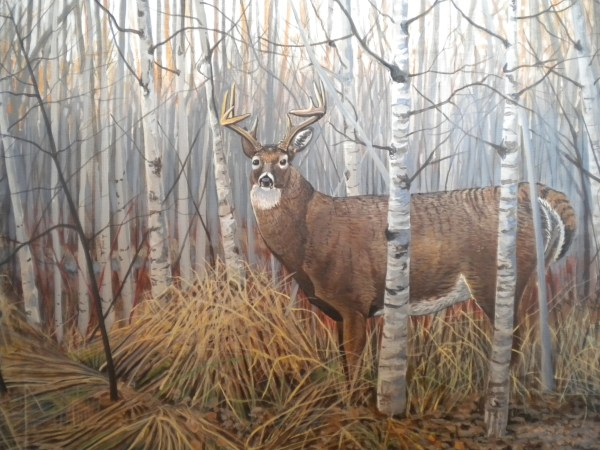 Wildlife Art Deer Shack Night