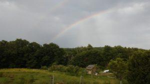 rainbow_farm
