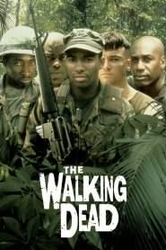 The Walking Dead online cda pl