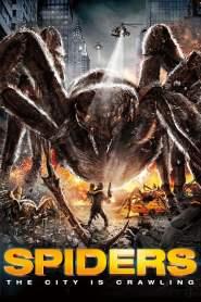 Spiders online cda pl