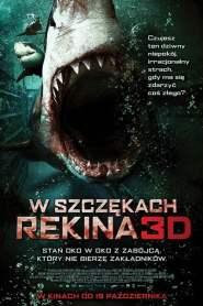 W szczękach rekina online cda pl