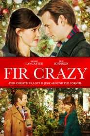 Fir Crazy online cda pl