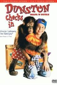 Małpa w hotelu online cda pl