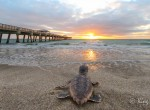 R_Juno Pier at Sunrise