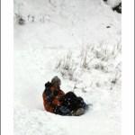 Kids Love Snow!