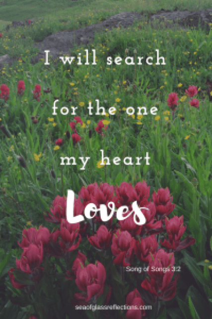 search for the one my heart loves