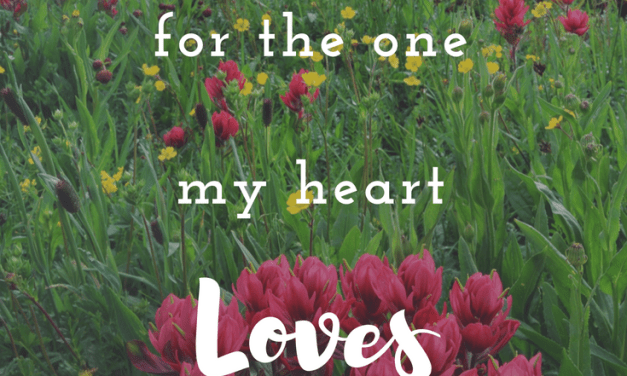 Search for the One Your Heart Loves