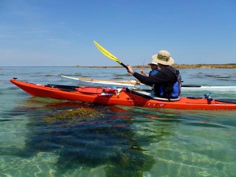 Best Paddle