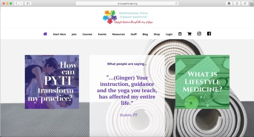 Professional Yoga Therapy Institute®