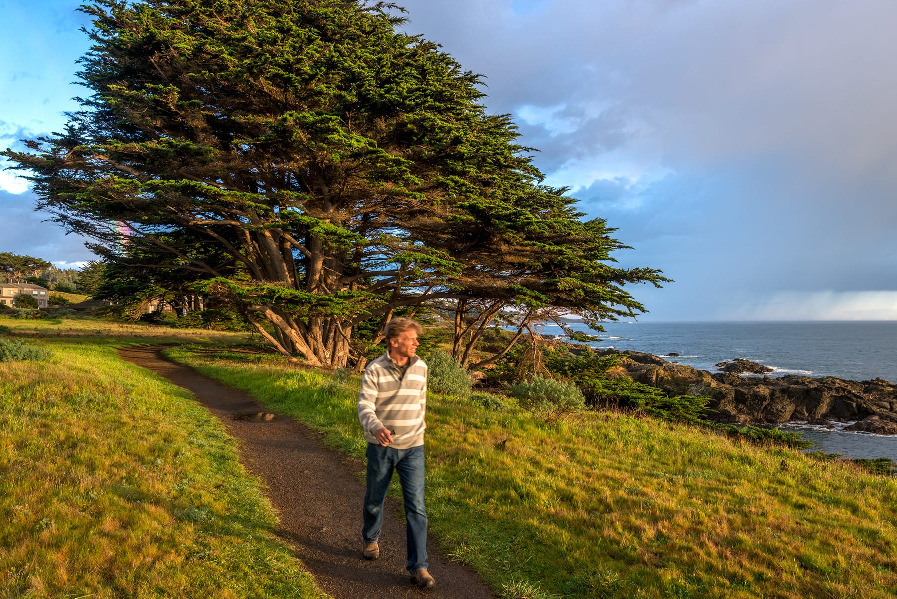 Sea Ranch Trails Available fronm the Comfort of Home on