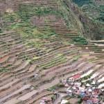 山一面に広がる「バナウェ」のライステラス(Banaue)、バタッド村の棚田(世界遺産)【フィリピン】