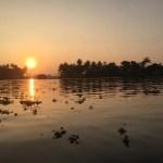 カヌーに乗ってバックウォーターに沈むオレンジ色の夕陽を眺める!【南インド・ケララ州】