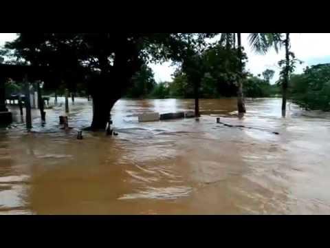 కళ్యాణ్ డాం గేట్స్ ఎత్తిన తర్వాత స్వర్ణముఖి నదిలో నీరు - YouTube