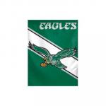 Philadelphia Eagles Retro Logo Vertical Flag