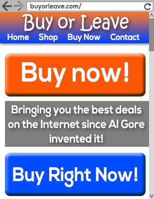 Buy or Leave Web Site