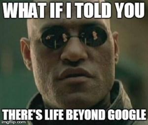 Life Beyond Google Meme